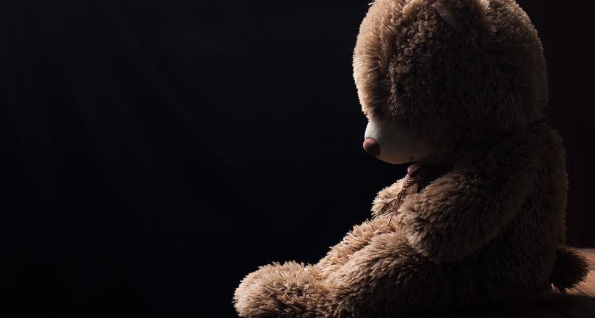 I plišanim medvjedićima je dosta korone: Preko 20 tisuća medvjedića čeka neka bolja vremena