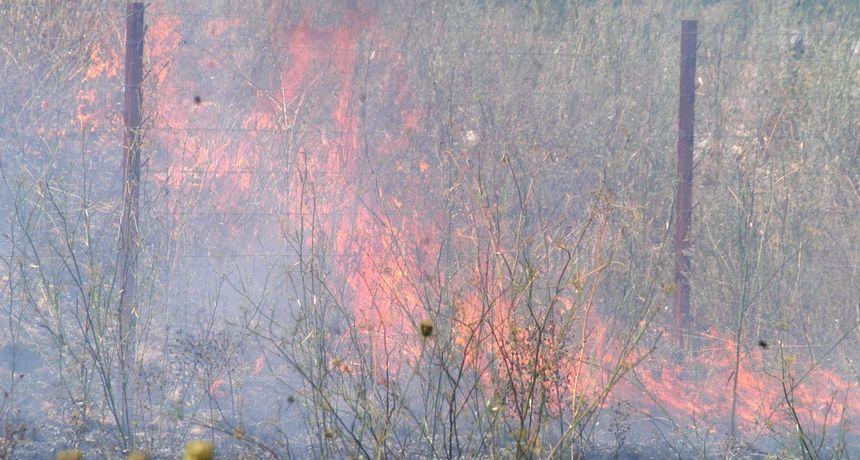 Veliki požar u Drinovcima, angažirana tri Canadaira i dva Airtractora