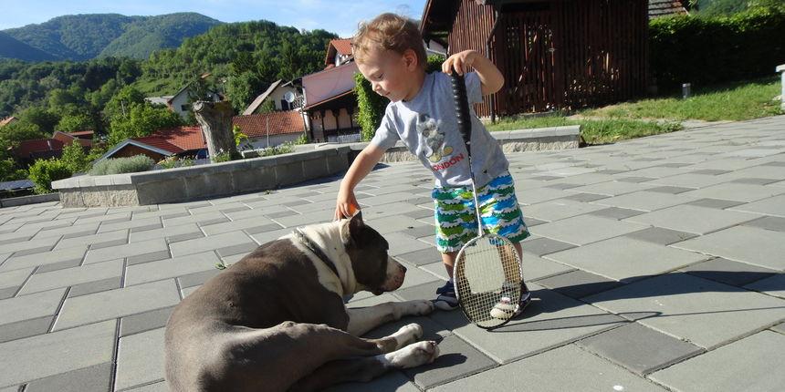 Milo je odrastao uz psa kojeg ljudi smatraju izuzetno opasnim, a ja nisam bila fer prema njemu