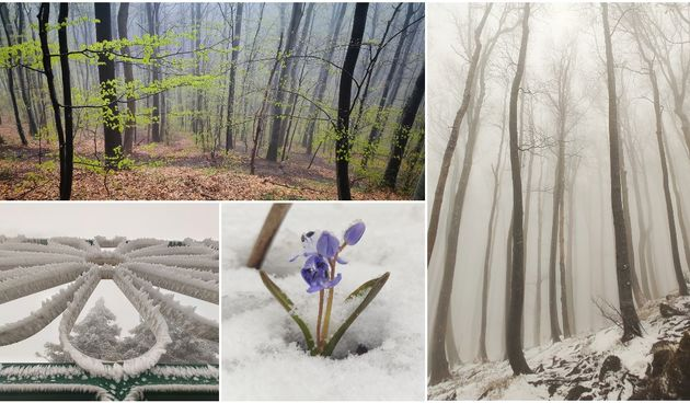 FOTO Dva lica Ivanščice: 'Vrh okovan injem i snijegom, u dolini zelenilo ukrašeno kapljicama...'