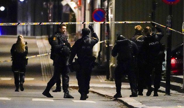 policija, Norveška