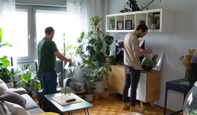 Biljke, prilog