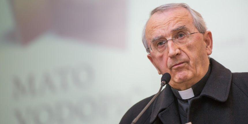Mons. Puljić: 'Papina izjava uzburkala je javnost i izazvala vjernike'