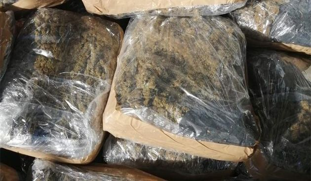Uništavanje droge u Našicama