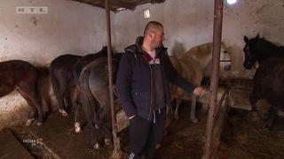 Jovan pokazuje imanje i konje (thumbnail)