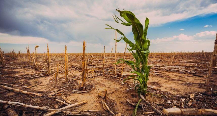 Klimatske promjene već utječu na većinu svjetskog stanovništva