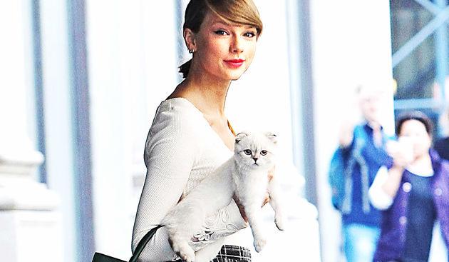 Taylor Swift, mačka Olivia
