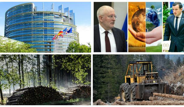 EU šume