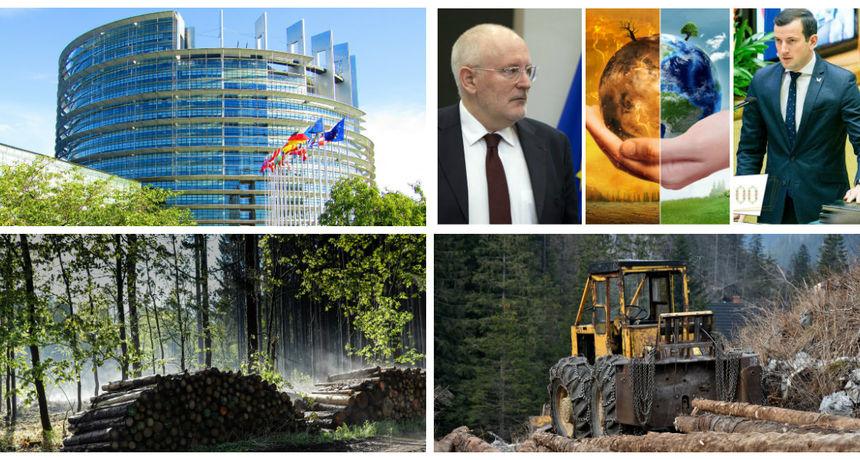 Borba protiv krčenja šuma u Hrvatskoj završila i pred EU koja radi plan za održivo šumarenje