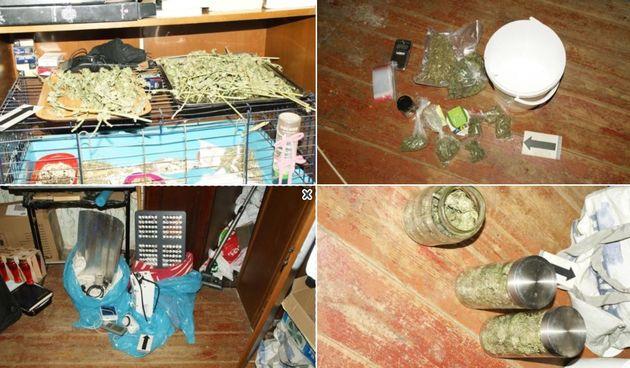 U domu 36-godišnjeg Osječanina policija pronašla marihuanu i popratnu opremu
