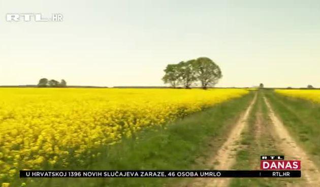 uljana repica (thumbnail)