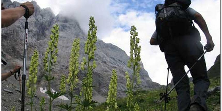Slovenija: Poginula tri planinara