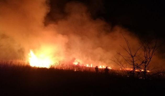Mala Subotica, požar
