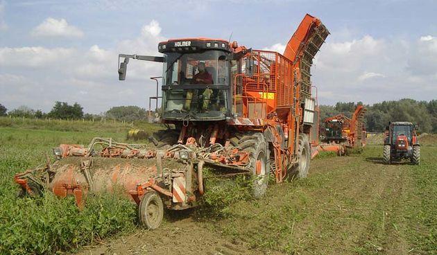Poljoprivrednici (ilustracija)