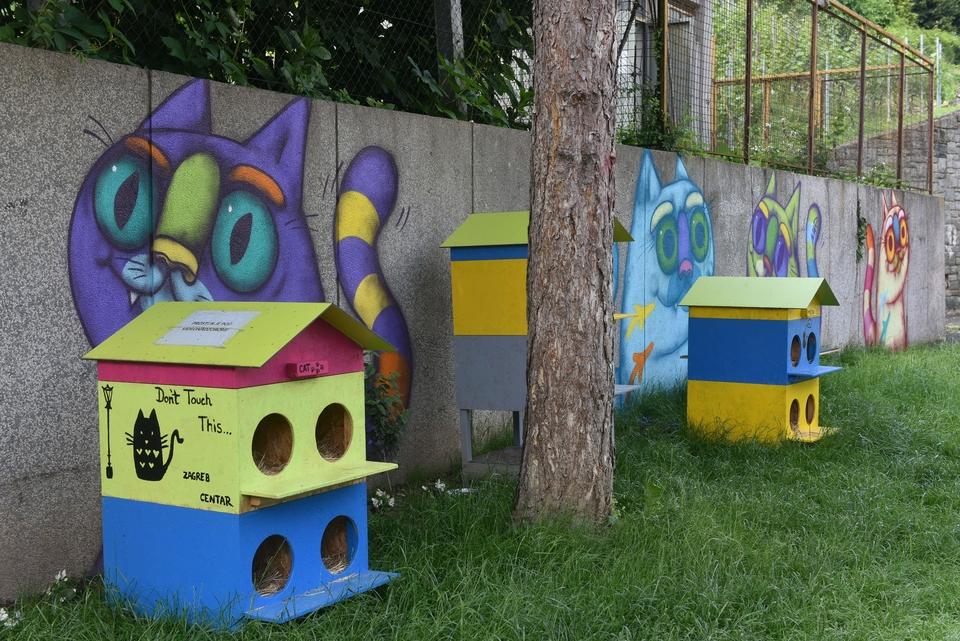 U Zagrebu prvo legalno hranilište uličnih mačaka - evo i gdje ga možete naći!