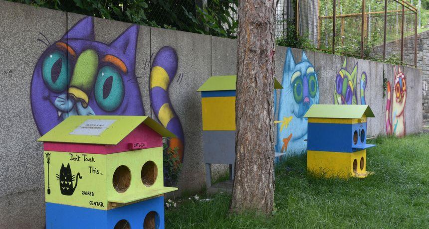 FOTO U Zagrebu prvo legalno hranilište uličnih mačaka - evo i gdje ga možete naći!