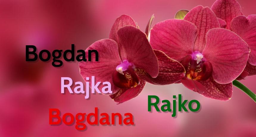 DANAS JE NJIHOV DAN Imendan slave osobe imena Bogdan, Bogdana, Rajko i Rajka