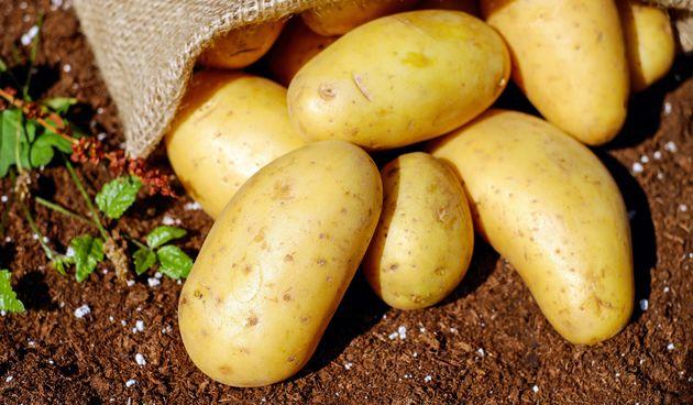 Kombinirajte ih s drugim povrćem, a ne s mesom, kako bi ih organizam mogao najbolje iskoristiti