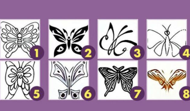Leptiri - test osobnosti