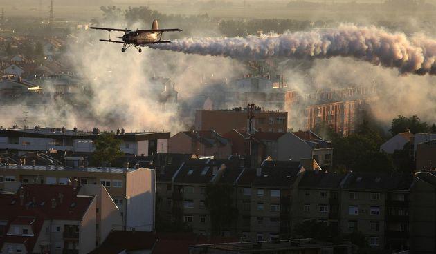 Avioni, Osijek, komarci