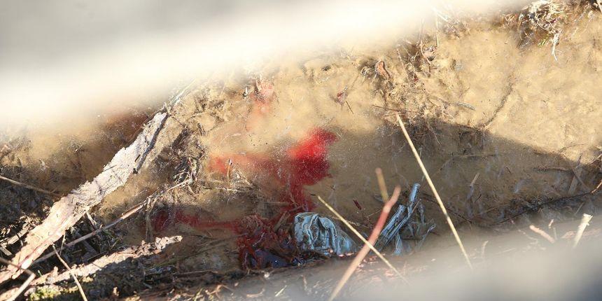 Jezivi detalji ubojstva: 17-godišnjak je vršnjaku zadao više od 100 ubodnih rana