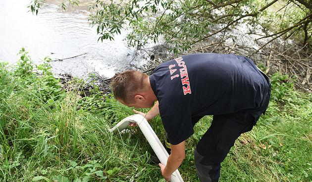 Intervencija vatrogasaca na bari u Luščiću 30.06.2020.