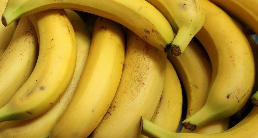 Ploče: U bananama se krilo 18 kilograma kokaina