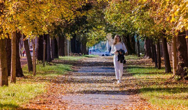 Jesenja šetnja osječkim parkovima