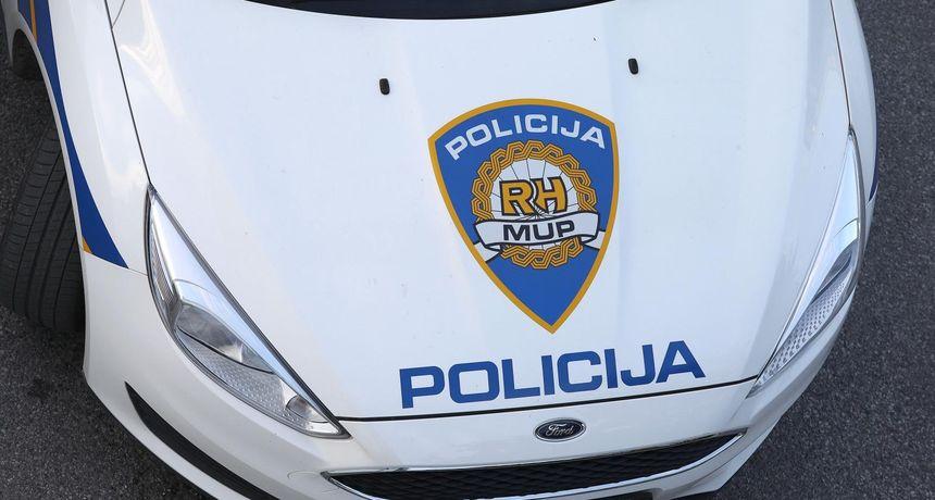 Pas istrčao pred auto, vlasniku policija naplatila kaznu