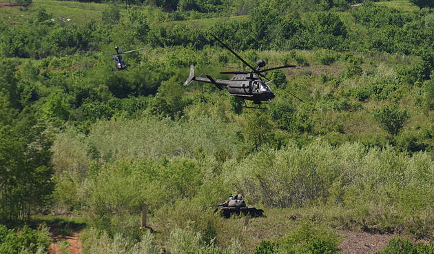 Međunarodna vojna vježba