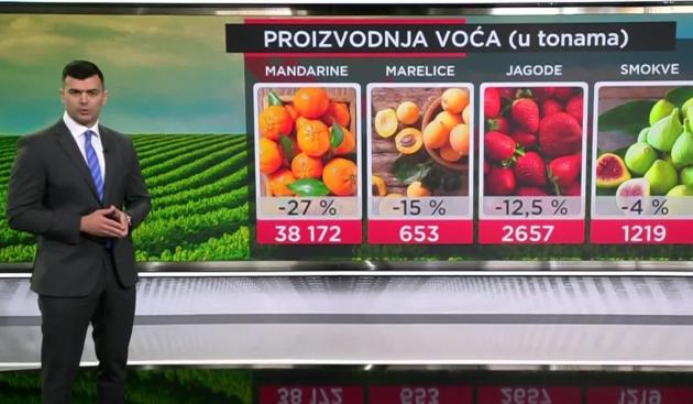 Proizvodnja voća i povrća