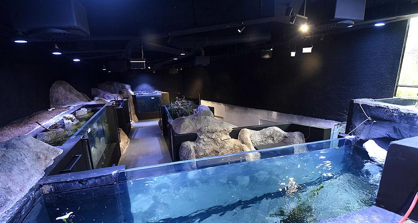 VIDEO: Otvara se karlovačka AquatiKA - najveći akvarij slatkovodne ribe u ovom dijelu Europe