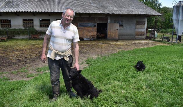 IVAN KRAJAČIĆ JEDAN JE OD POSLJEDNJIH KOZARA U SELU Trava raste, a koze gladne