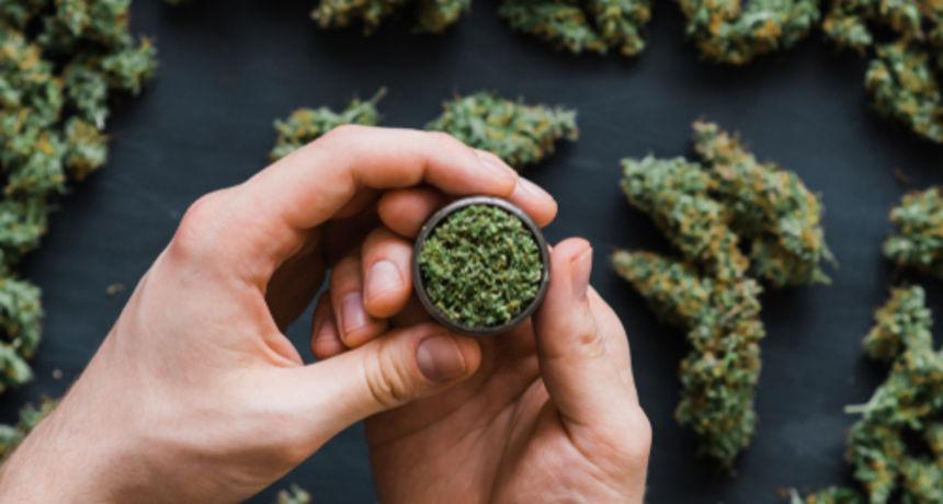 Policija mladićima zaplijenila marihuanu