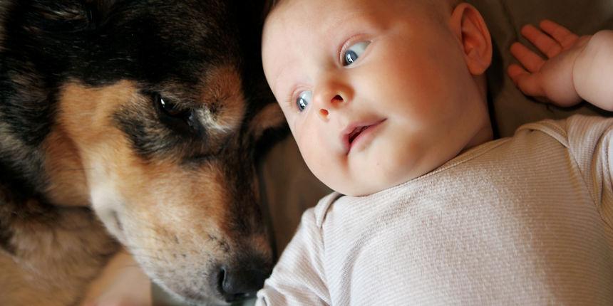 Vjerni prijatelji: ako beba odrasta s psom, to ju štiti od mnogih čestih bolesti