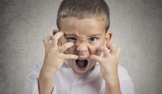 """2. Jedno od njih je uvijek ljuto - """"Jedino vrijeme kada su moji sinovi sretni i zadovoljni je kada jedu ili spavaju"""""""