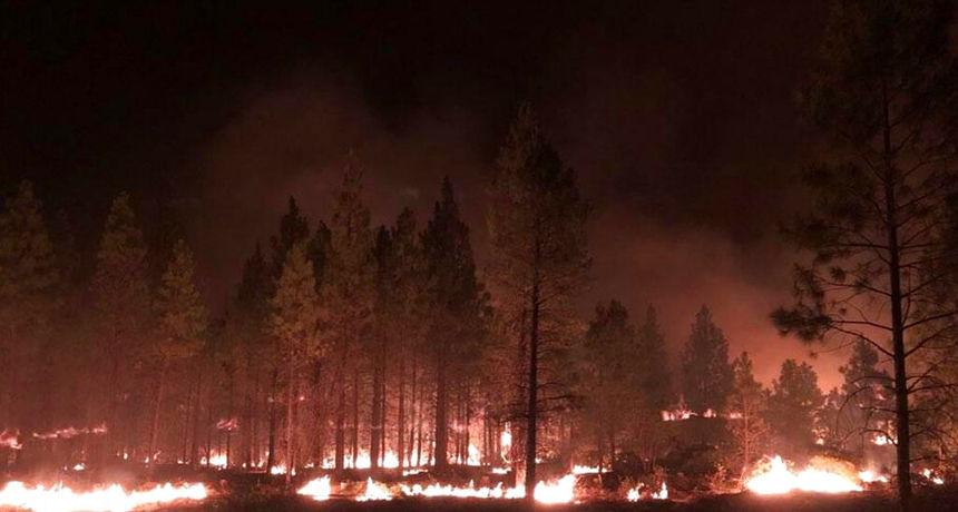 U posljednja 24 sata, izbilo je njih čak osam: SAD se priprema za nove požare