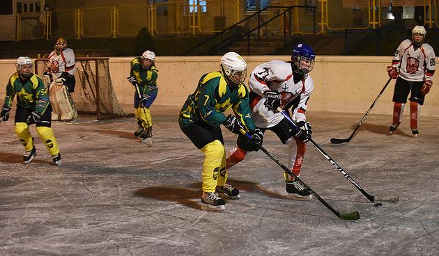Hokej: IHK Karlovac - HK Siscia 29. siječnja 2021.