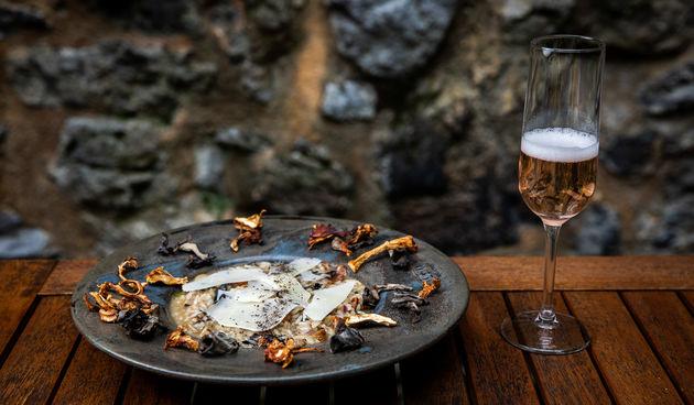 Nakon specijaliteta s pivom, ove jeseni karlovački restorani nude bogatu ponudu jela s gljivama