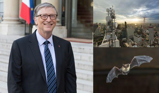 Bill Gates, 5G, šišmiš