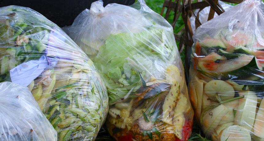 Najnovije izvješće pokazuje da svake godine bacimo 900 milijuna tona potpuno ispravne i jestive hrane
