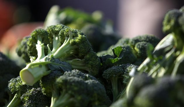 brokula povrće zdrava hrana