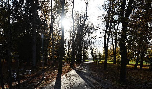 jesen(2)