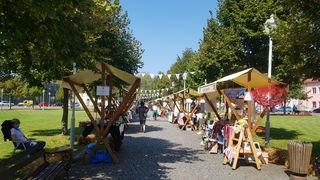Subota u Ogulinu u znaku nadaleko poznatog zelja - kreće 8. Festival Ogulinskog zelja, bit će zabave i finih sarmi