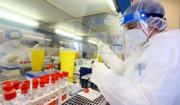 Testiranje, koronavirus