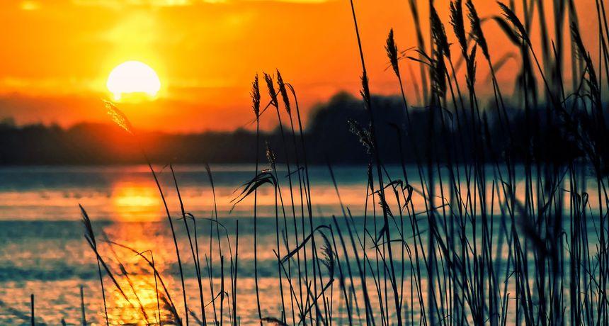 Predivno jezero Borovik: Ne znate kamo za vikend? Ova zelena oaza u Slavoniji ima terapeutski učinak