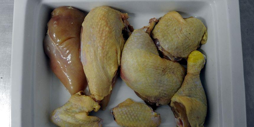 Hitna obavijest: U piletini pronađena opasna bakterija, nemojte ju konzumirati