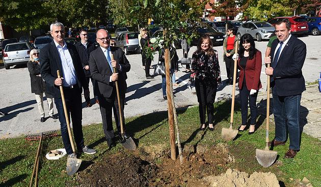 Interreg sadnja stabla 6.10.2020.