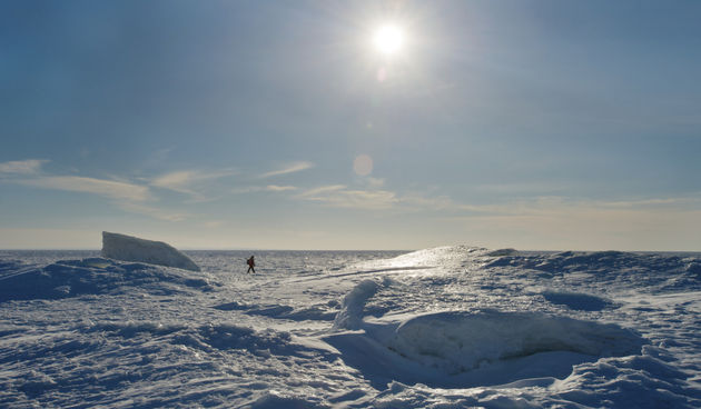 Sjeverni pol