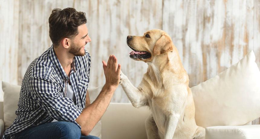 Nevjerojatni četveronošci: Čovjekov najbolji prijatelj može predvidjeti jedno opasno zdravstveno stanje kod čovjeka